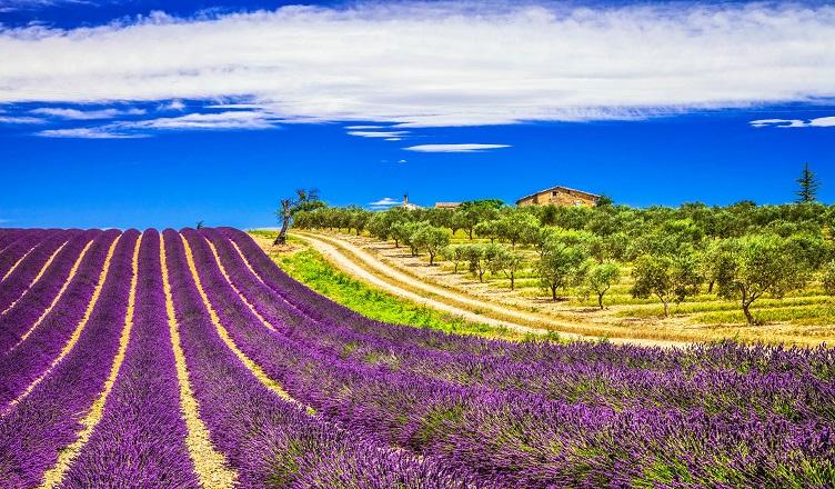 Vacanta in sudul Frantei