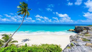 Zboruri spre Barbados