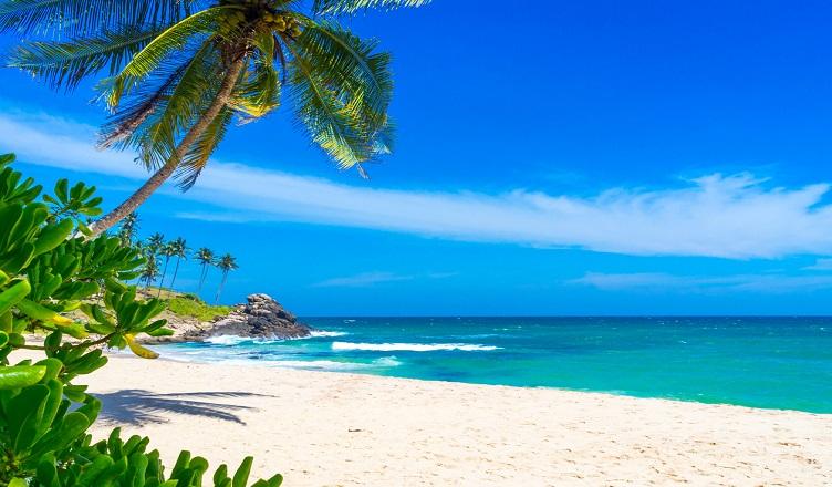 Zboruri spre Sri Lanka